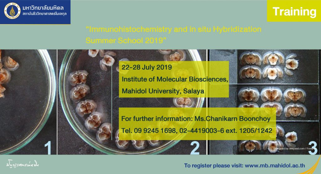Immunohistochemistry & in situ hybridization Summer School