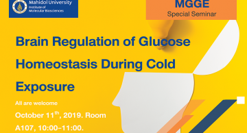 Brain Regulation of Glucose Homeostasis During Cold Exposure