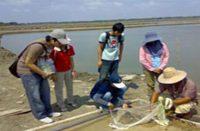 ห้องเรียนธรรมชาติ การออกฝึกภาคสนาม(Field Trip)
