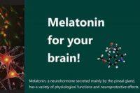 Melatonin for your brain!