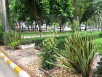 MB Garden