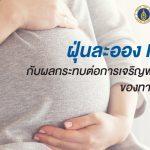 ฝุ่นละออง PM 2.5 กับผลกระทบต่อการเจริญพัฒนาสมองของทารกในครรภ์